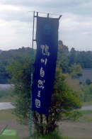 20080110kamogawa01